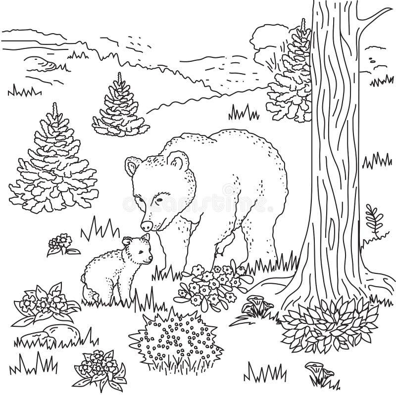 Взрослый медведь и его новичок иллюстрация штока