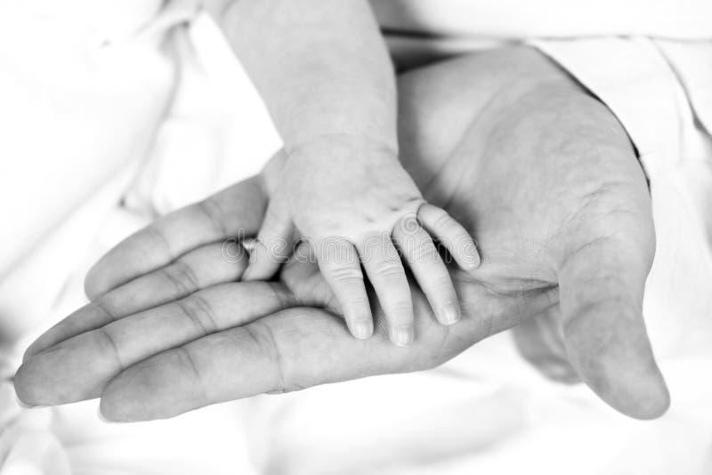 взрослая белизна черной руки младенца стоковое изображение rf