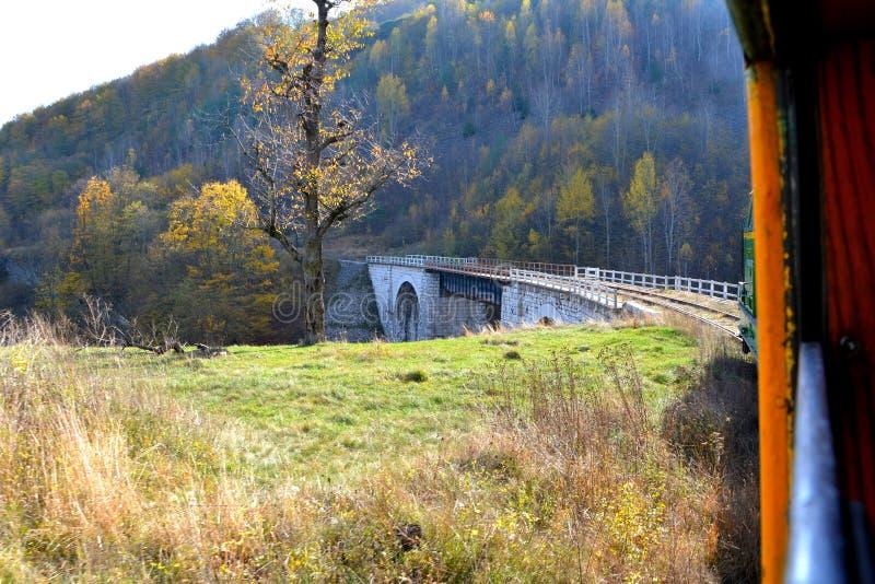 Виадукт Старая горная железная дорога Оравита-Анина в Банате Типичное зрение в лесах Трансильвании, Румыния Осеннее представление стоковые фото