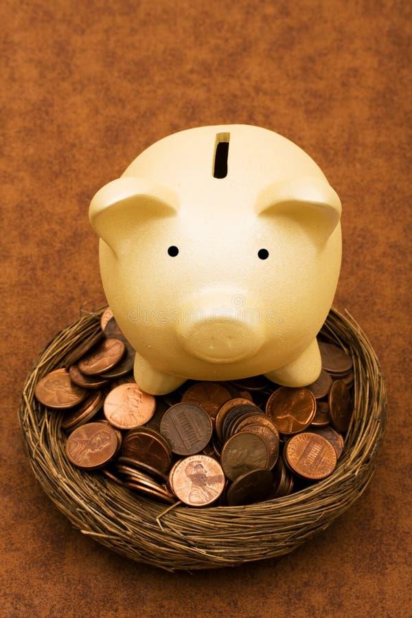 видеть сбережений ваш стоковая фотография