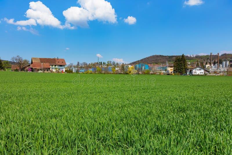 Вид на загородную местность в Швейцарии весной стоковое фото rf