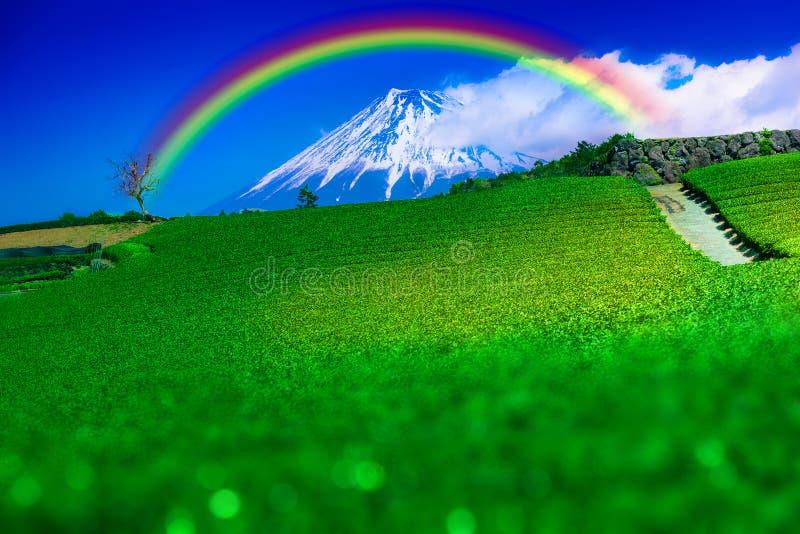 Вид на чайные плантации и гору Фудзи имеет радужную радугу, как видно из города Фудзи, префектура Сидзуока, Япония стоковое фото