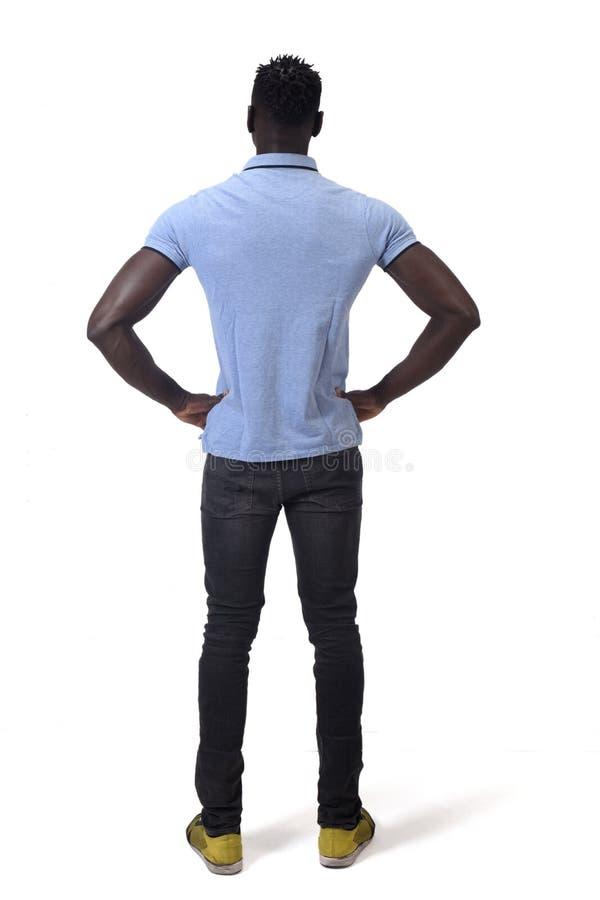 Вид сзади африканских рук человека на талии на белой предпосылке стоковое изображение