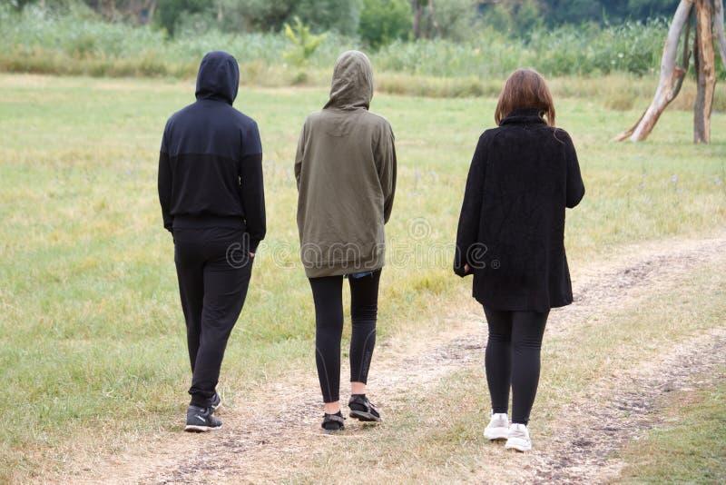 Вид сзади 3 людей идя вдоль грязной улицы в поле рано утром стоковая фотография rf