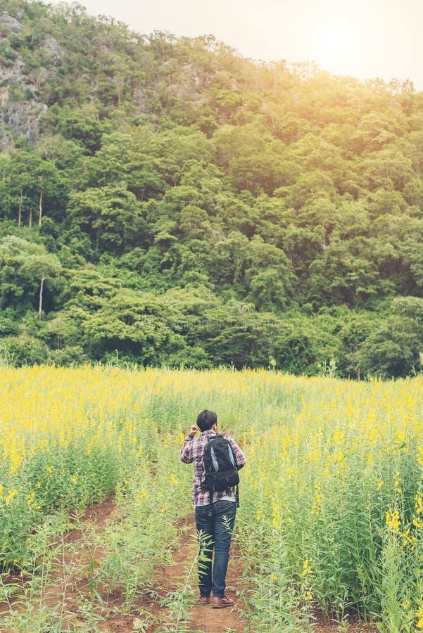 Вид сзади молодого человека битника при рюкзак в лесе стоковые фотографии rf