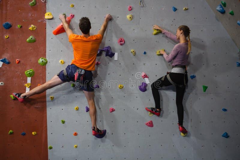 Вид сзади скалолазания спортсменов в клубе стоковые фото