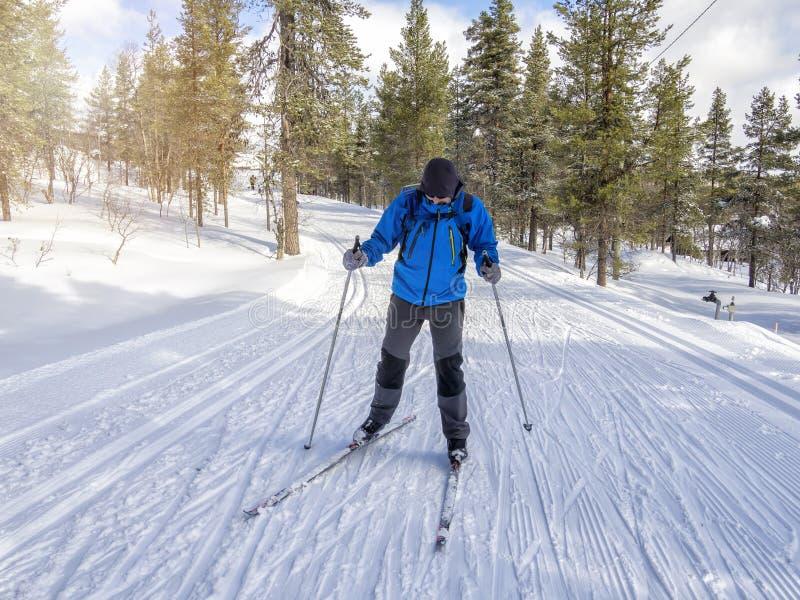 Вид спереди беговых лыж человека на следе в Финляндии стоковые фото