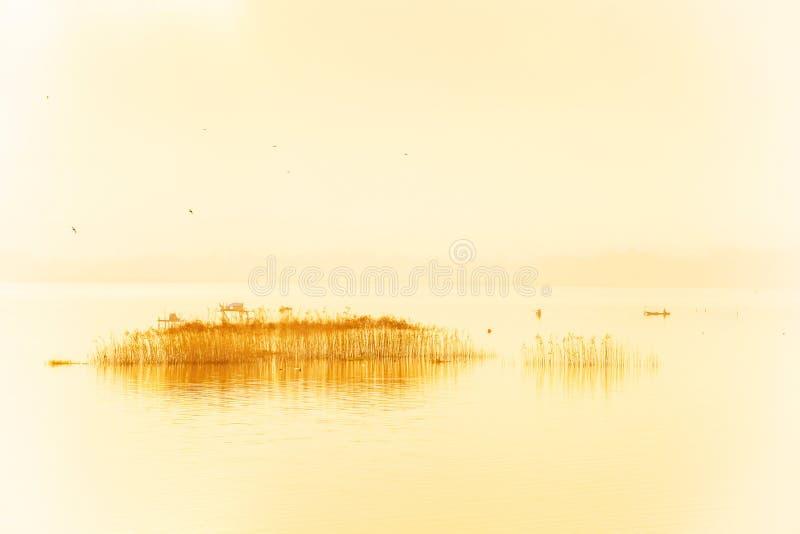 Вид с воздуха, абстрактное искусство озера в тумане утра, рыболове на рыбацкой лодке в тропическом озере, стаде птиц летая в стоковые изображения