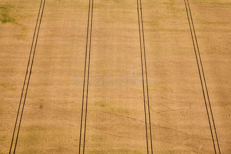 Вид с воздуха геометрического желтого пшеничного поля стоковая фотография rf