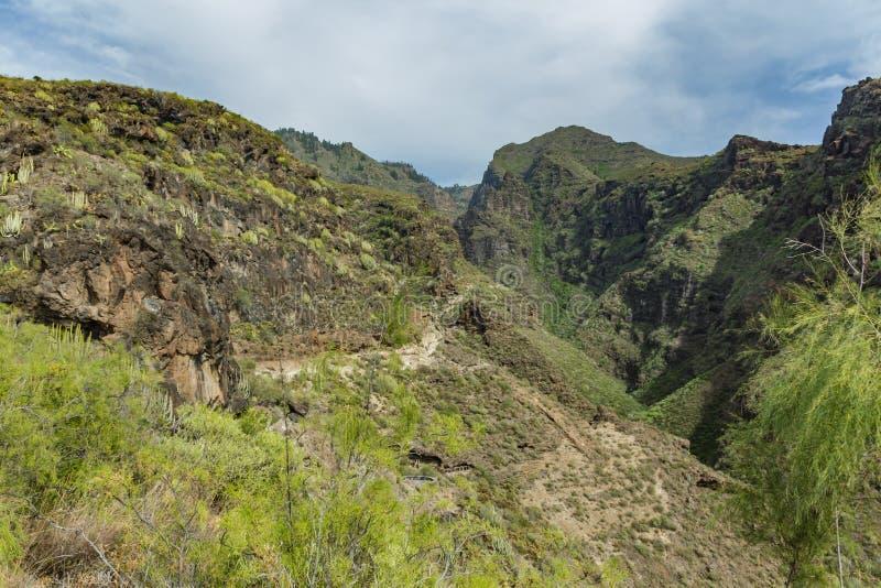 Вид с воздуха известного ущелья ада в Adeje r Голубое небо и облака над горами Скалистая отслеживая дорога в сухой горе стоковое изображение rf