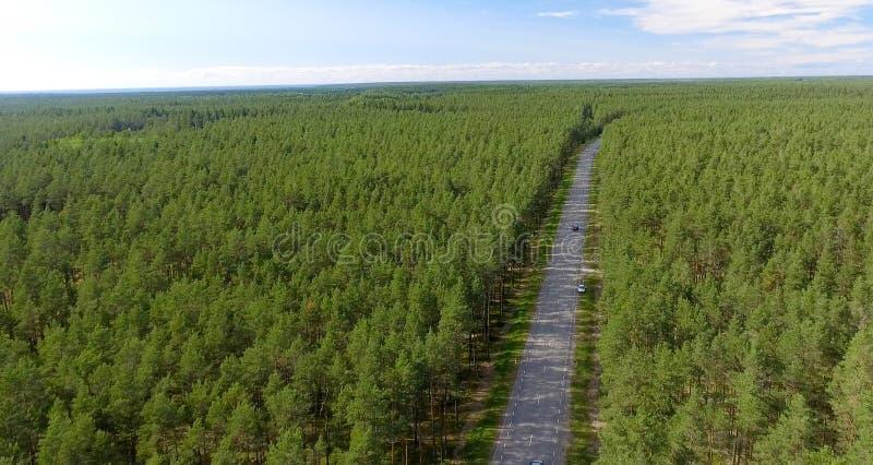 Вид с воздуха красивой дороги через лес стоковые фото