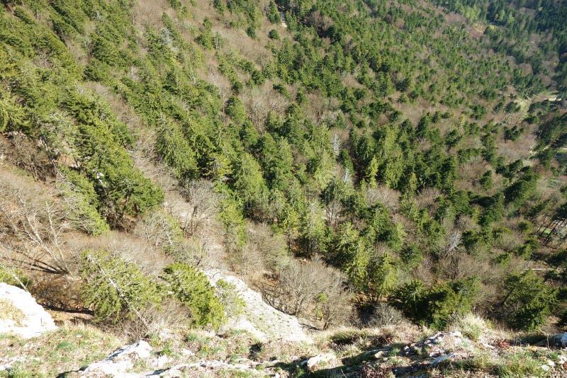 Вид с воздуха крутой скалы стоковые изображения rf