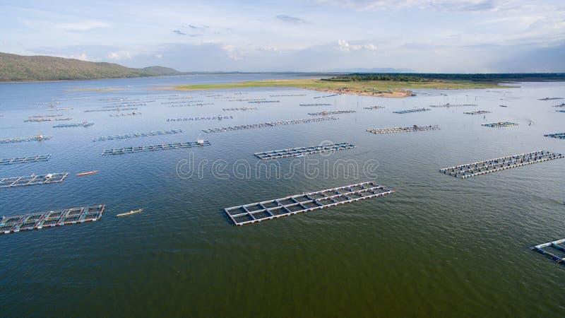 Вид с воздуха, курятник рыб, клетки рыб, Khonkean, Таиланд стоковое фото