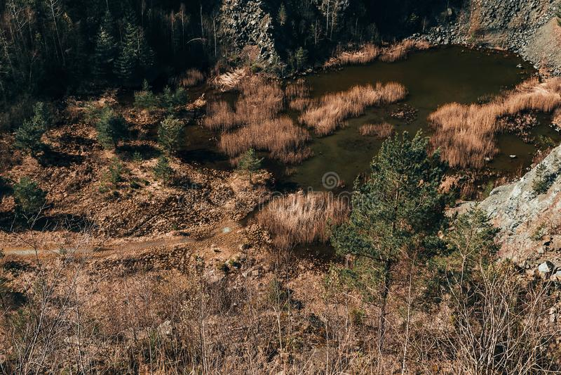 Вид с воздуха к заболоченному карьеру с высокими сухой травой, деревьями и прудом, чехией, покрашенным фото стоковые изображения rf