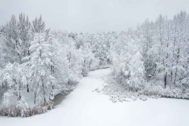 Вид с воздуха ландшафта зимы красивого с деревьями покрытыми с изморозью и снегом Пейзаж зимы сверху Фото ландшафта стоковые фотографии rf