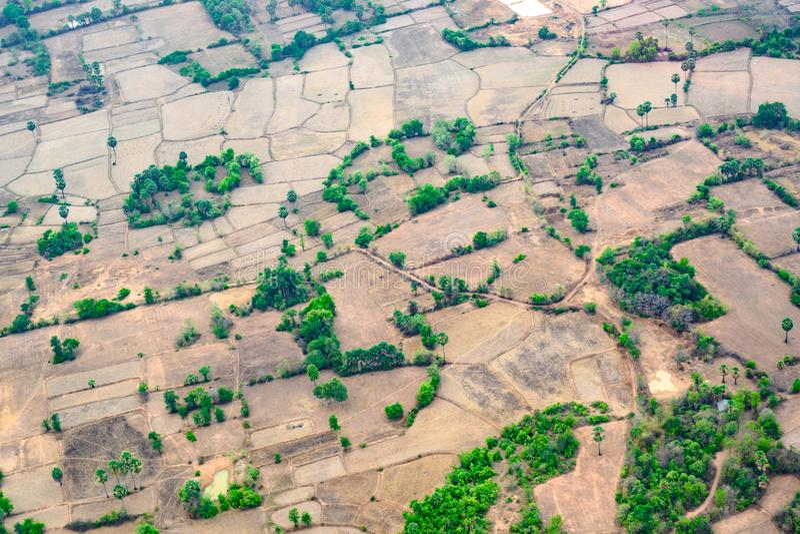 Вид с воздуха над большой сжатой плантацией риса в Камбодже, ландшафт с пустыми полями риса стоковое изображение rf
