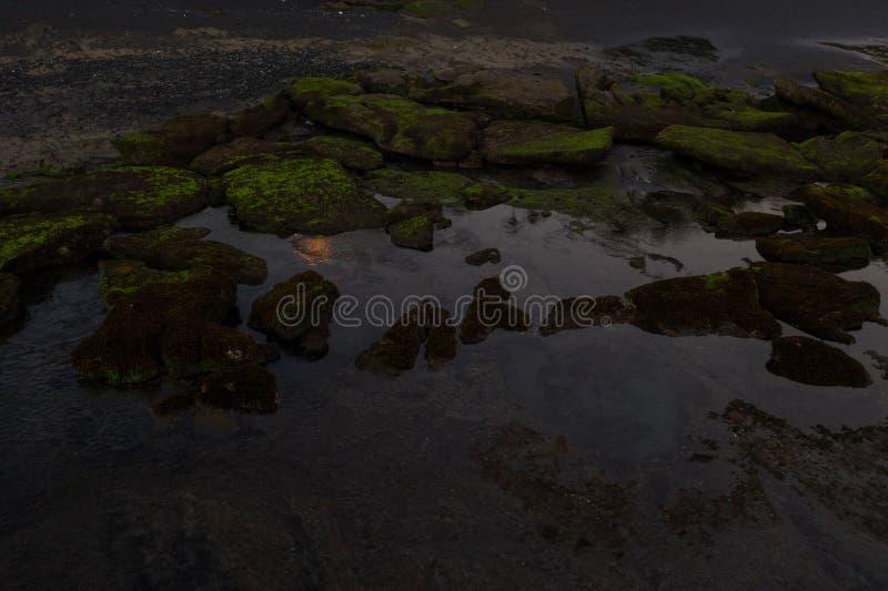 Вид с воздуха на скалы, покрытые зеленым мхом в море возле черного пляжРстоковые изображения rf