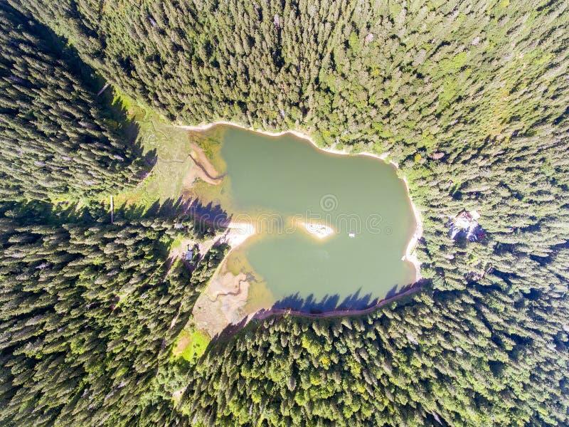 Вид с воздуха озера Synevir в прикарпатских горах в Украине стоковые фото