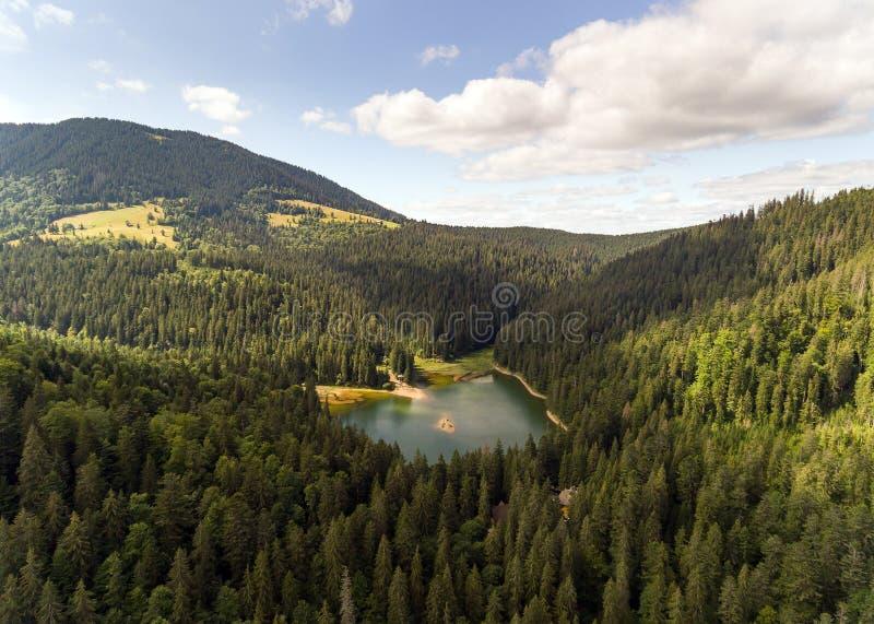 Вид с воздуха озера Synevir в прикарпатских горах в Украине стоковая фотография