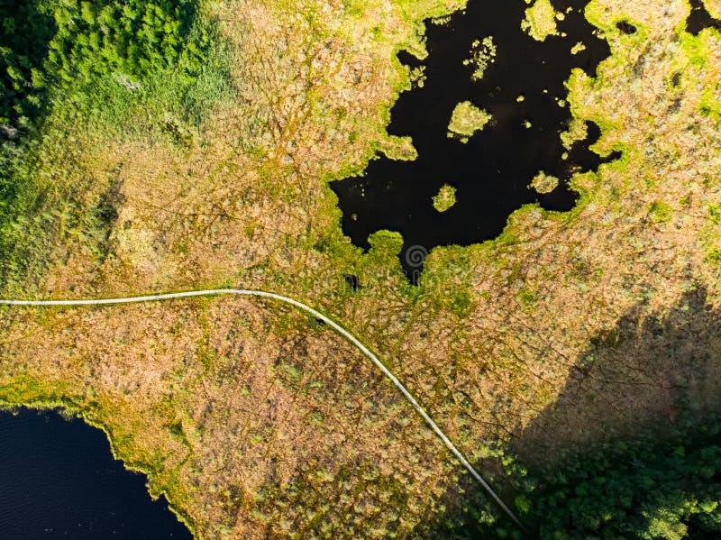 Вид с воздуха пути Varnikai когнитивного идя, водя через самые красивые места заповедника Varnikai, обнаруженные местонахождение  стоковые изображения rf