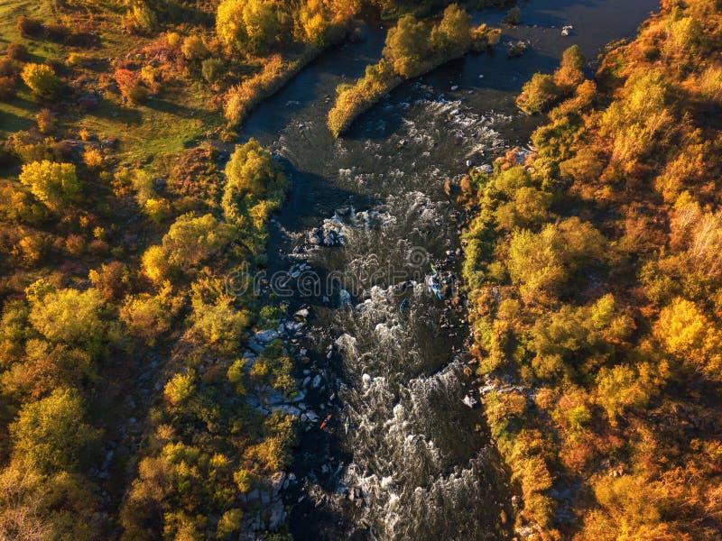 Вид с воздуха реки и деревьев цвета, солнечного ландшафта осени, снятого трутня Предохранитель Bugski национального парка, Украин стоковое фото rf