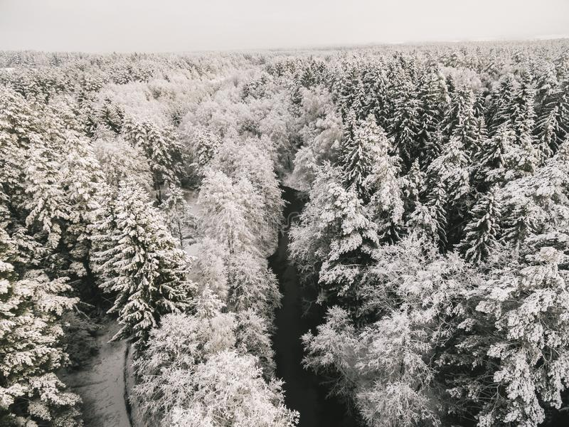 Вид с воздуха реки леса во времени  зимнего дня стоковые изображения