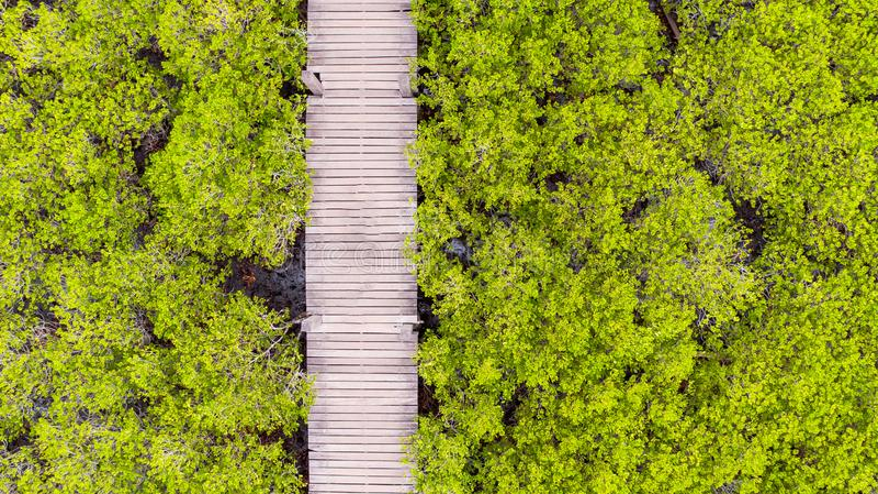 Вид с воздуха ремня Prong Thung, Rayong, Таиланда стоковая фотография