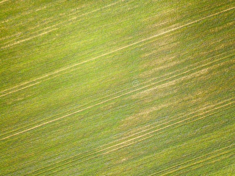 Вид с воздуха сельской местности Essex стоковые фото