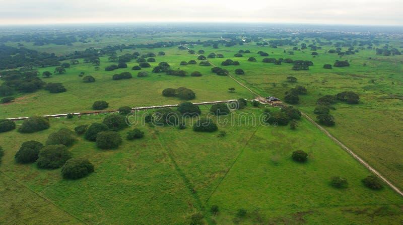 Вид с воздуха Paddocks стоковое фото