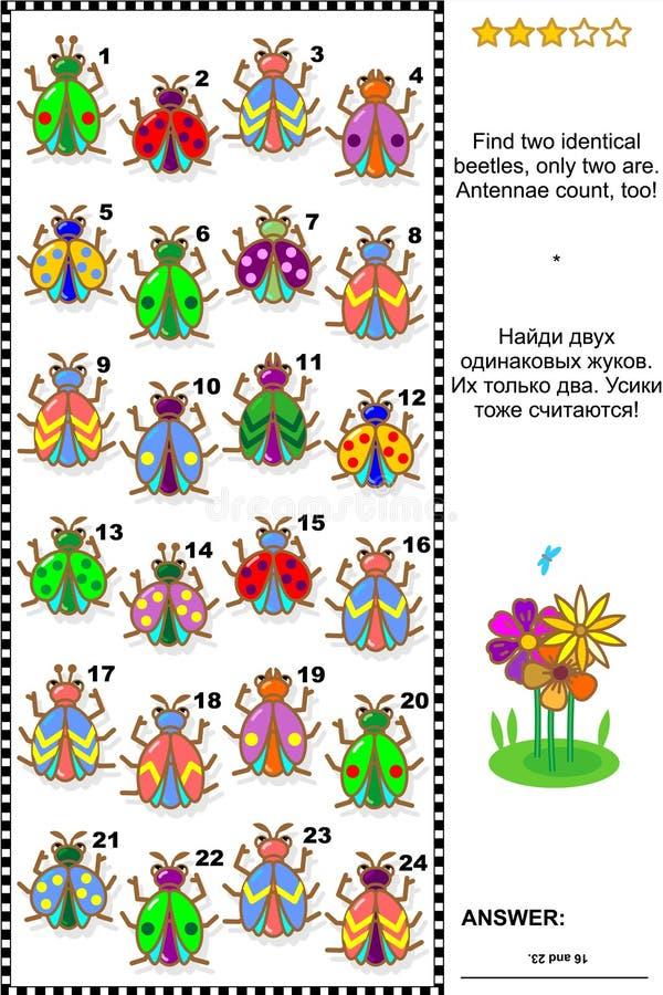 Визуальная головоломка - черепашки находки 2 идентичные бесплатная иллюстрация