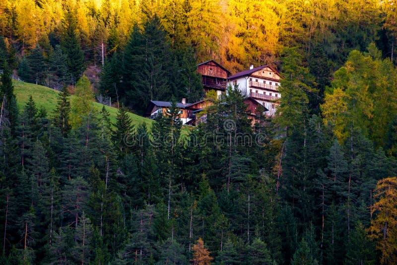 Вилла в лесе осени стоковое фото rf