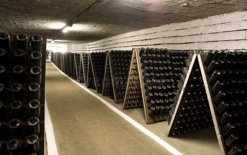 винзавод шампанского стоковые изображения