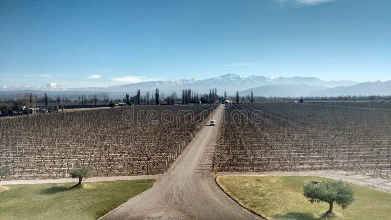 Винная страна Mendoza Аргентины стоковые изображения rf