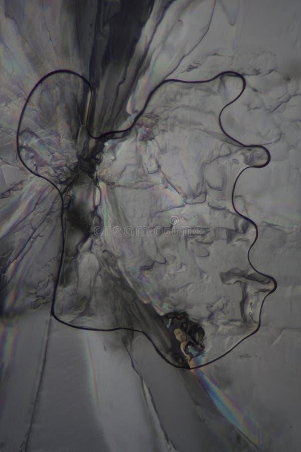 Виннокаменная кислота под микроскопом стоковые фото
