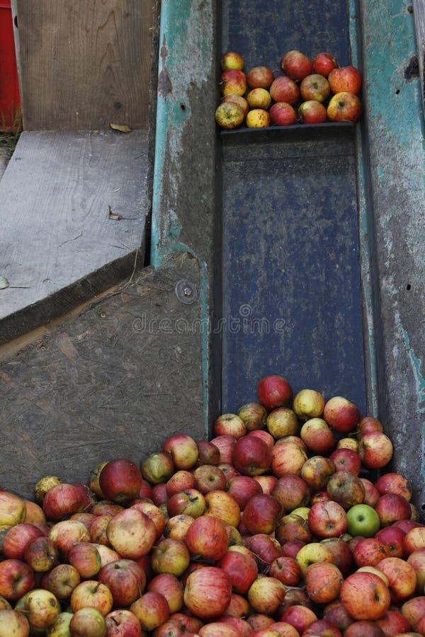 Винный пресс Яблока стоковое фото