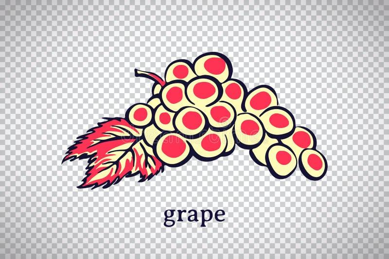 Виноградина руки вычерченная стилизованная Плод вектора изолированн бесплатная иллюстрация