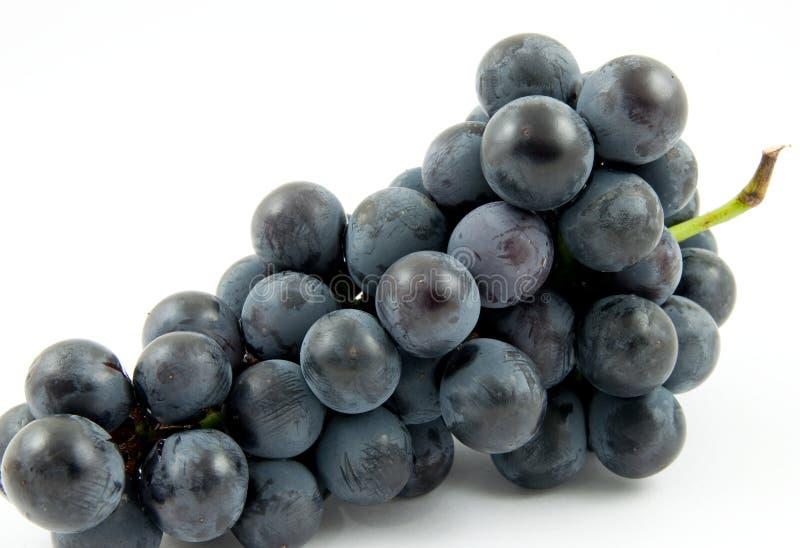 Виноградины вина стоковое фото