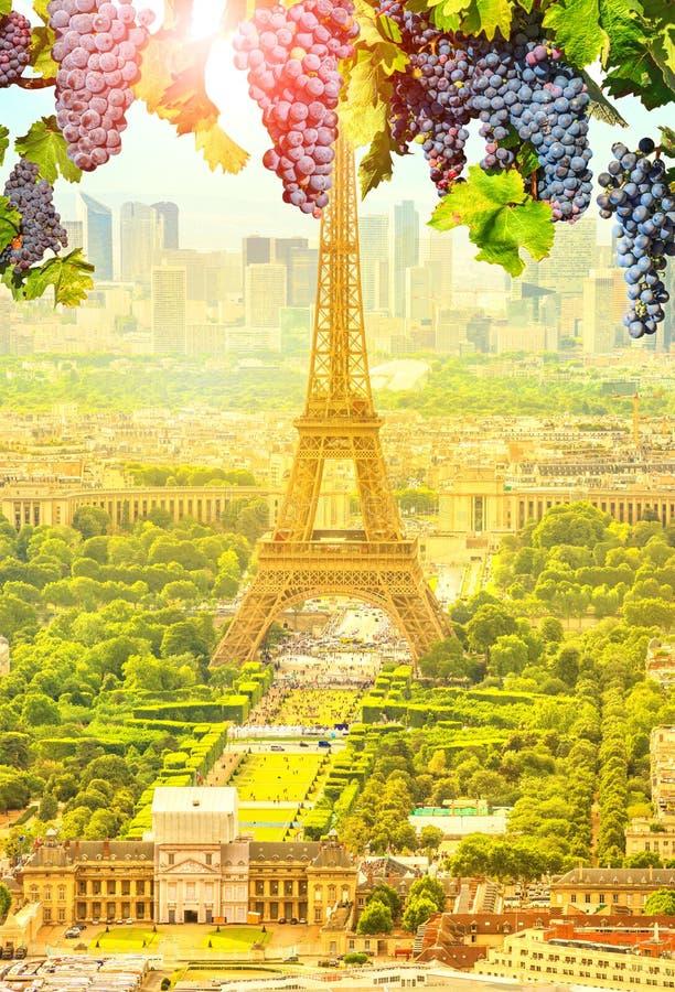 Виноградины вися в Париже стоковая фотография