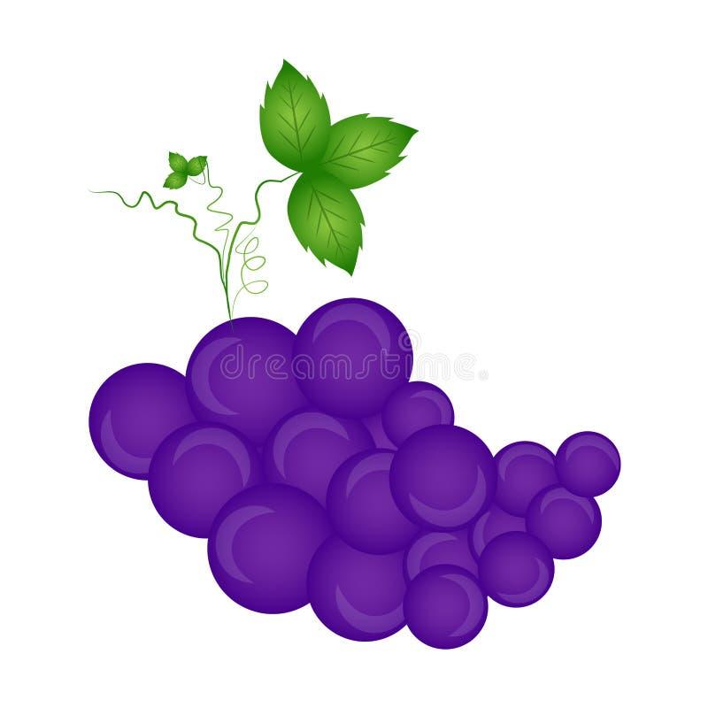 виноградины изолировали белизну иллюстрация штока