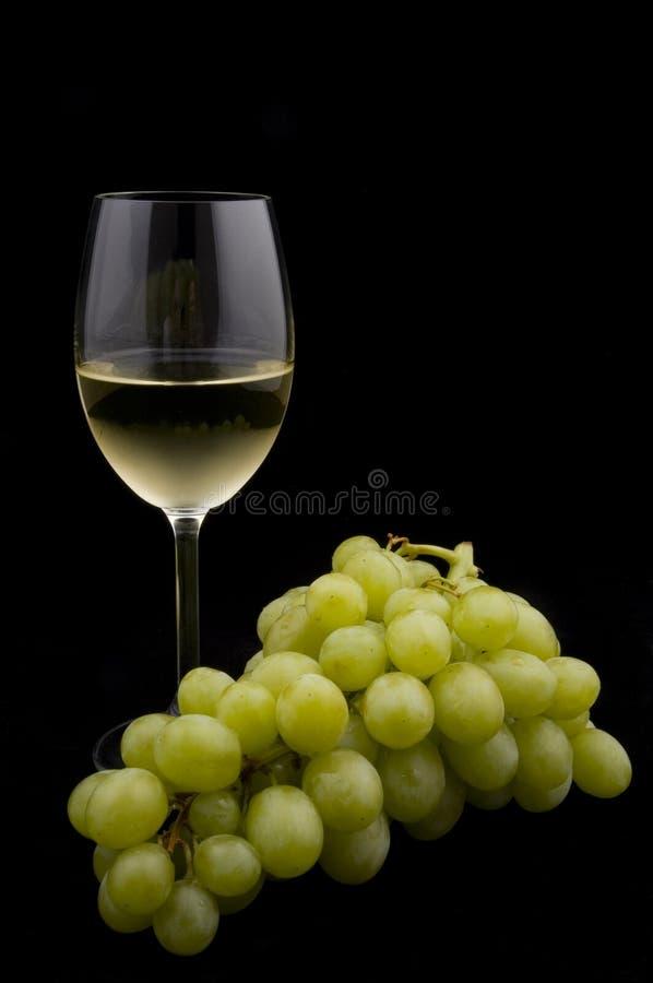 виноградины изолировали белое вино стоковые изображения rf