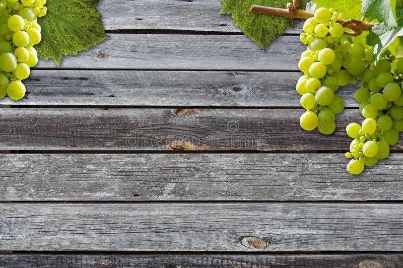 Виноградины на виноградном вине с деревянной предпосылкой стоковые изображения rf
