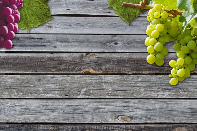 Виноградины на виноградном вине с деревянной предпосылкой стоковое изображение