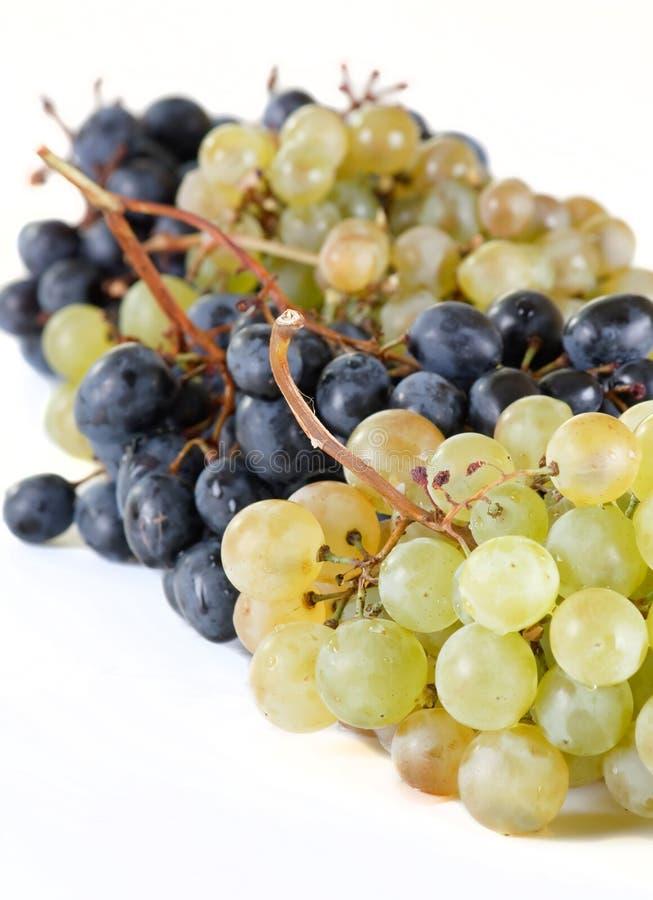 виноградины пука свежие стоковое фото