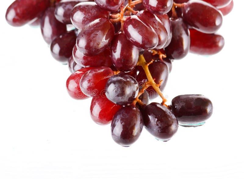 виноградины пука свежие стоковые изображения rf