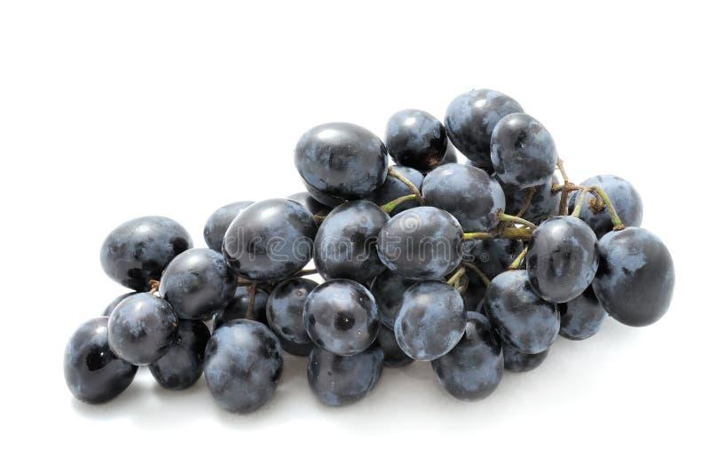 виноградины пурпуровые стоковая фотография rf