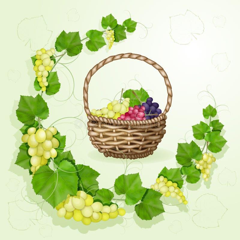 Виноградины с предпосылкой листьев стоковая фотография