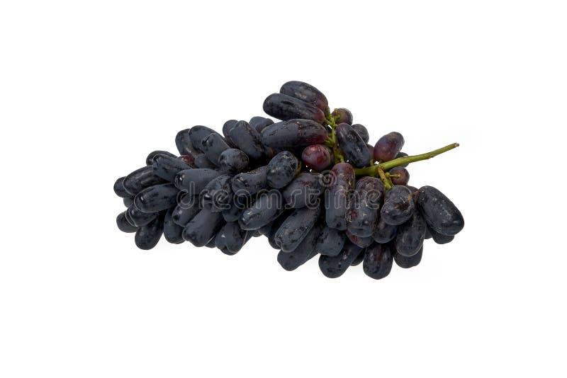 Виноградины темного сапфира бессемянные с мясистым зеленым стержнем стоковое фото