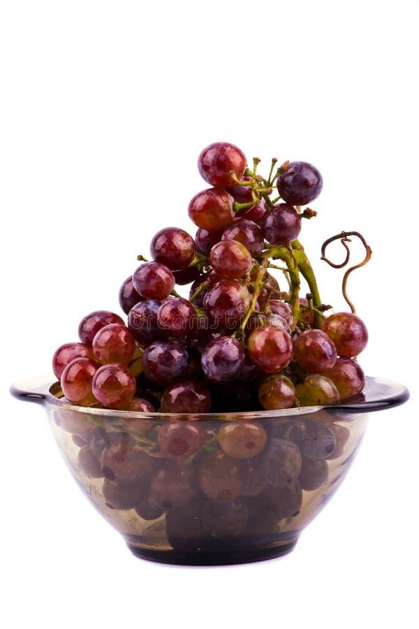 виноградины шара изолировали белизну стоковые изображения rf