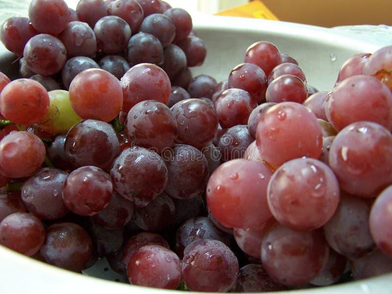виноградины шара стоковая фотография rf