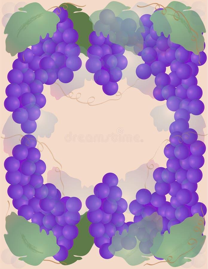 Download виноградины иллюстрация штока. иллюстрации насчитывающей естественно - 487633